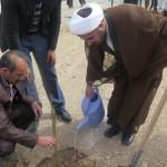 مراسم جشن درختکاری و غرس نهال با حضور امام جمعه محترم