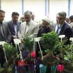 افتتاح نمایشگاه گل و گیاه در شهرستان سرخه